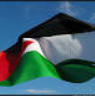 Palestine flag tiny